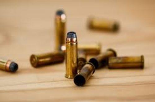 Article : Criminalité: Comment se protéger ?