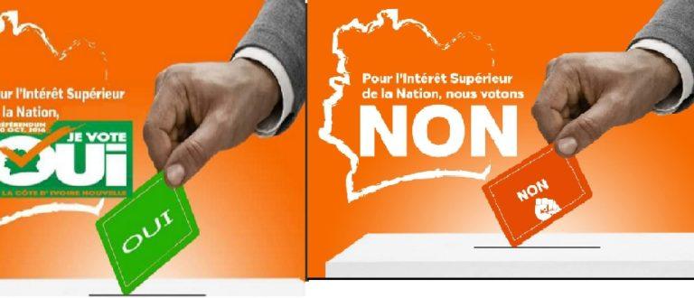 Article : Nouvelle Constitution : la campagne bat son plein sur twitter